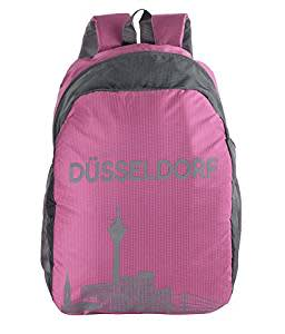 loot fast-Dussledorf Polyester 20 Ltr Pink Laptop Backpack