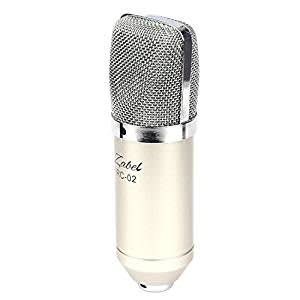 Zabel Condenser Microphone With Shock Mount And Foam Shield - Silver