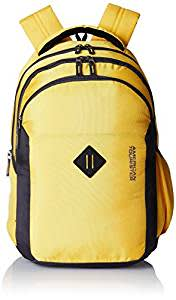 American Tourister 27 Ltrs Yellow Laptop Bag (Comet 01)