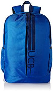 United Colors of Benetton 17 Ltrs Blue Casual Backpack (17A6BKPK0L17I)
