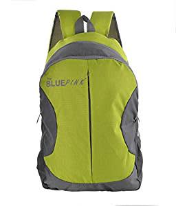 The Blue Pink Polyester 18 Liters Green And Grey Laptop Backpack (LEO-14)