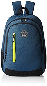 Gear Navy Blue and Green Casual Backpack