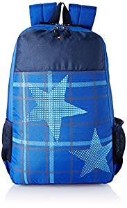 Tommy Hilfiger 24.07 Ltrs Navy Laptop Backpack (TH/BIKOL08MOU)