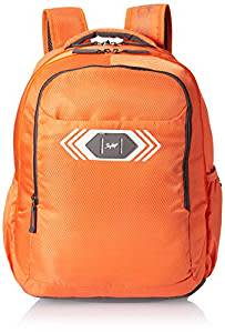 Skybags Polyester 32 Ltrs Orange Casual Backpack (BPVIBFS2ONG)